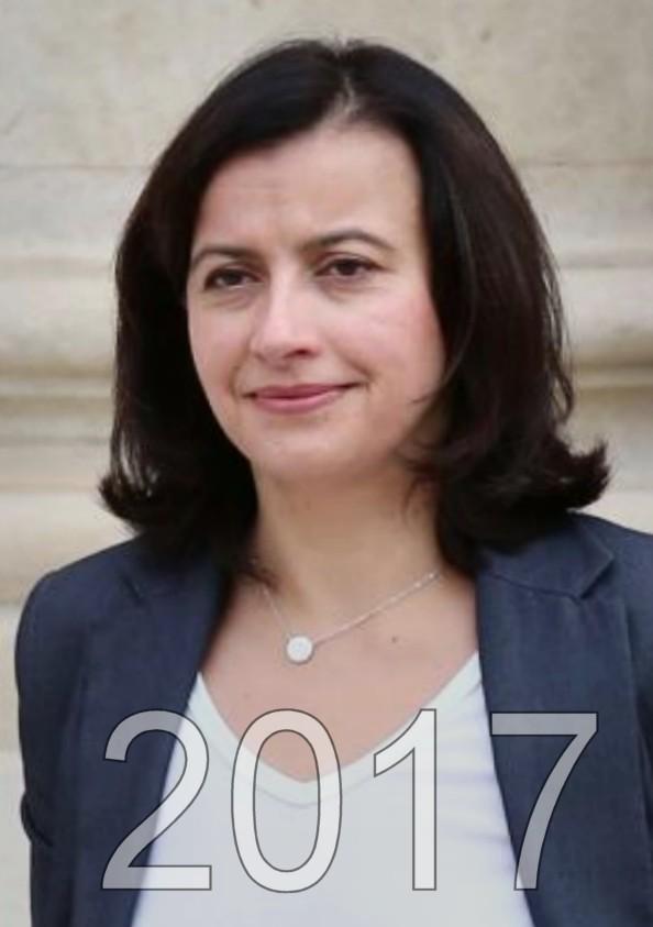 Cécile Duflot élection presidentielle 2017, candidat